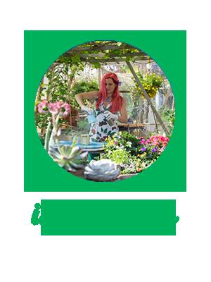 Garten - Fotogalerien